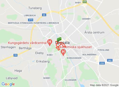 Uppsala - En kunglig promenad