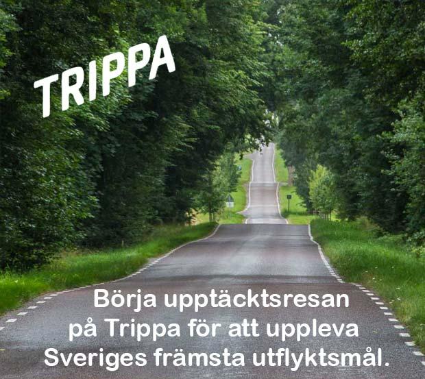 Trippa mobile front slider image
