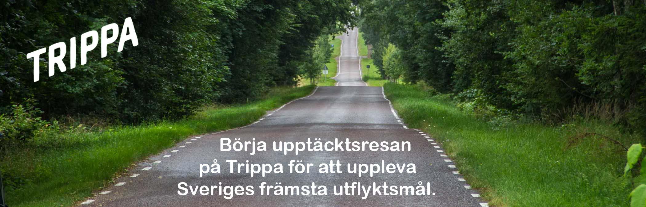 Trippa desktop front slider image